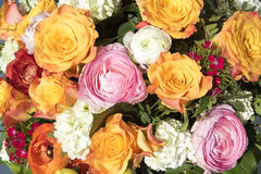 Vibrant Bouquet of Flowers Stock Image