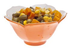 Vibrant Bowl of Mixed Vegetables Stock Image