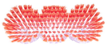 Vibrant Bristles of a Spring Cleaning Brush. Stock Images