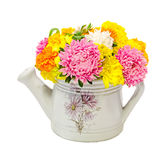 Vibrant colored Chrysanthemum flowers in a white watercan, bouquet, close up, floral arrangement Stock Photography