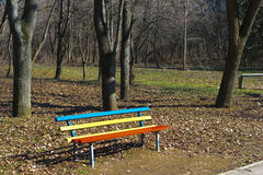 Vibrant colored red, yellow and blue bench, midday in spring time forest park royalty free stock photo