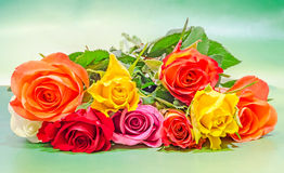 Vibrant colored (red, yellow, orange, white) roses flowers, close up, bouquet, floral arrangement, green background Stock Images