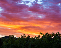 Vibrant, colorful clouds at sunset over a Napa Valley vineyard Stock Photo