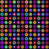 Vibrant Colorful Flowers on Black Background. Retro trend colorful floral pattern Stock Image