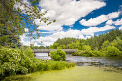 Vibrant Colors of the Apple River Stock Photos