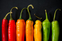 Vibrant colors on peppers on black slate bacground. Many vibrant colors on peppers on black slate bacground Royalty Free Stock Image