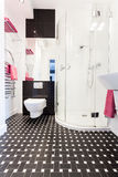 Vibrant cottage - Bathroom interior. Vibrant cottage - Interior of a black and white bathroom Stock Images