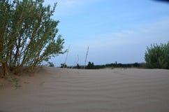 Vibrant desert stock photo