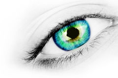 Vibrant eye. A macro shot of an eye with a vibrant blue/green/yellow iris royalty free stock image