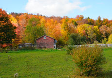 Vibrant fall colors in the country Royalty Free Stock Photography