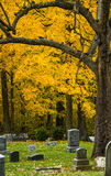 Vibrant Fall Foliage in the graveyard Royalty Free Stock Photos