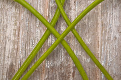 Vibrant Flower Stems on Rustic Wood Stock Photo