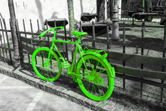 Vibrant green bicycle on the gray background Stock Images