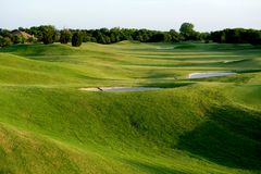 Vibrant Green Golf Course Stock Images