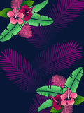Vibrant hibiscus background Stock Photos