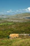 Vibrant  irish scenic coastal seascape Royalty Free Stock Photography