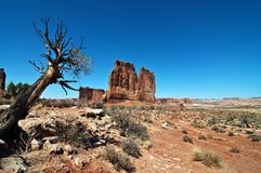 Vibrant landscape capture from utah arches Royalty Free Stock Image