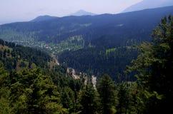 Vibrant landscape in Gulmarg Stock Photography