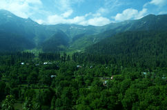Vibrant landscape near Srinagar-5. A beautiful scene with a green trees spread in the valley of a Kashmir Stock Image