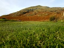 Vibrant Mountain From Grass. The vibrant mountain captured from ground level Royalty Free Stock Photo