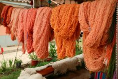 Vibrant orange colored Peruvian natural dyed wool yarns hanging at the Andes textile village, Cuzco region, Peru. South America stock photos