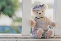 Vibrant outdoor photo of teddy bear sitting on the yard at the park royalty free stock image