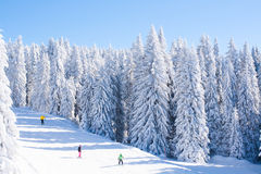 Vibrant panorama of the slope at ski resort Kopaonik, Serbia, people skiing, snow trees, blue sky. Vibrant panorama of the slope at ski resort Kopaonik, Serbia Stock Photo