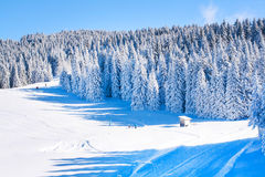 Vibrant panorama of the slopes at ski resort, snow trees, blue sky. Vibrant panorama of the slope at ski resort, snow pine trees, blue sky Royalty Free Stock Images