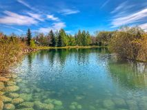 Vibrant Panoramic Summer Park Lake View stock image