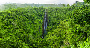 Vibrant Papapapaitai falls on Upolu island, Samoa Royalty Free Stock Photo