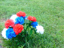 Vibrant patriotic flowers. Vibrant red, white, and blue patriotic flowers against neatly trimmed green grass Stock Photos