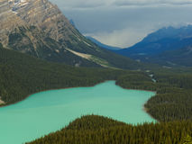 Vibrant Peyto Lake Surrounded by Rocky Mountains Stock Photography