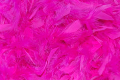Pink feather boa background Royalty Free Stock Photography