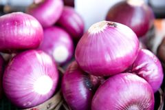 Vibrant purple onions Royalty Free Stock Images