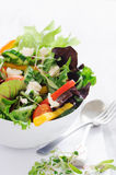 Vibrant raw salad Stock Photography