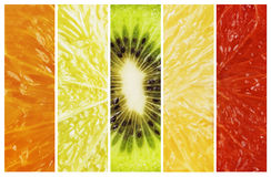 Vibrant red to green color fruit citrus stripe collection Stock Image