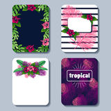 Vibrant set of tropical backgrounds Royalty Free Stock Photo