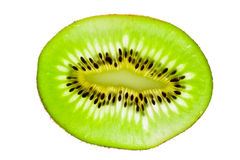 Vibrant slice of kiwi fruit Royalty Free Stock Photography