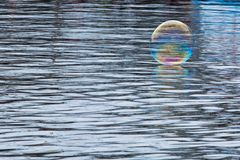 Vibrant soap bubble with blurred background royalty free stock images