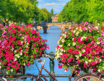 Vibrant summer Amsterdam stock photos