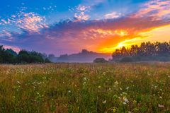 Vibrant summer sunrise over foggy, magical meadow Royalty Free Stock Photography
