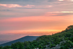 Vibrant Sunrise. Trees covered in sunrise fog royalty free stock images