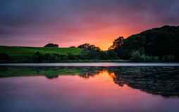 Vibrant sunset over lake Royalty Free Stock Photos