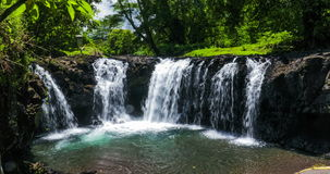 Vibrant Togitogiga falls with swimming hole on Upolu, Samoa stock video footage