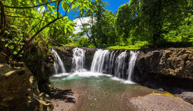 Vibrant Togitogiga falls with swimming hole on Upolu, Samoa. Vibrant Togitogiga falls with swimming hole on Upolu, Samoa Islands royalty free stock photography