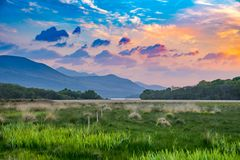 Vibrant and colorful mountain range sunset meadow landscape with green grass and orange clouds. Vibrant, vivid and colorful mountain range sunset and meadow with Stock Image