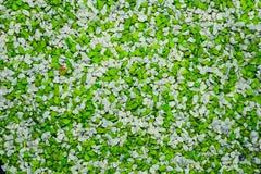 Vibrantly τα ζωηρόχρωμα χαλίκια που διαδίδονται είναι όμορφο υπόβαθρο Στοκ Εικόνες