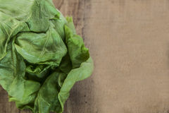 Vibrantly green lettuce Royalty Free Stock Photo