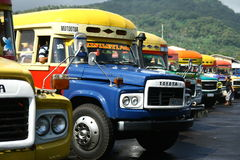 Vibrantly painted bus in Samoa Royalty Free Stock Image