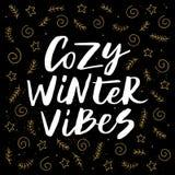 Vibraphone confortable d'hiver Image stock